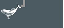 Компания НАЙС - наш логотип